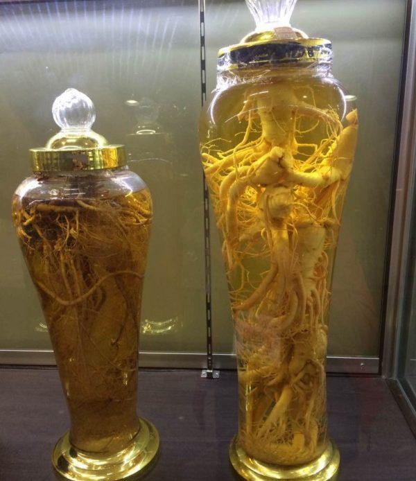 medicina tradizionale asiatica per la disfunzione erettile